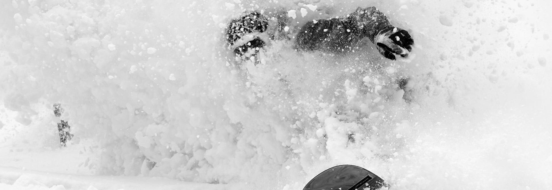 Ski & Snowboard dans la neige poudreuse - Kodama Lodge - Japon - Accueil
