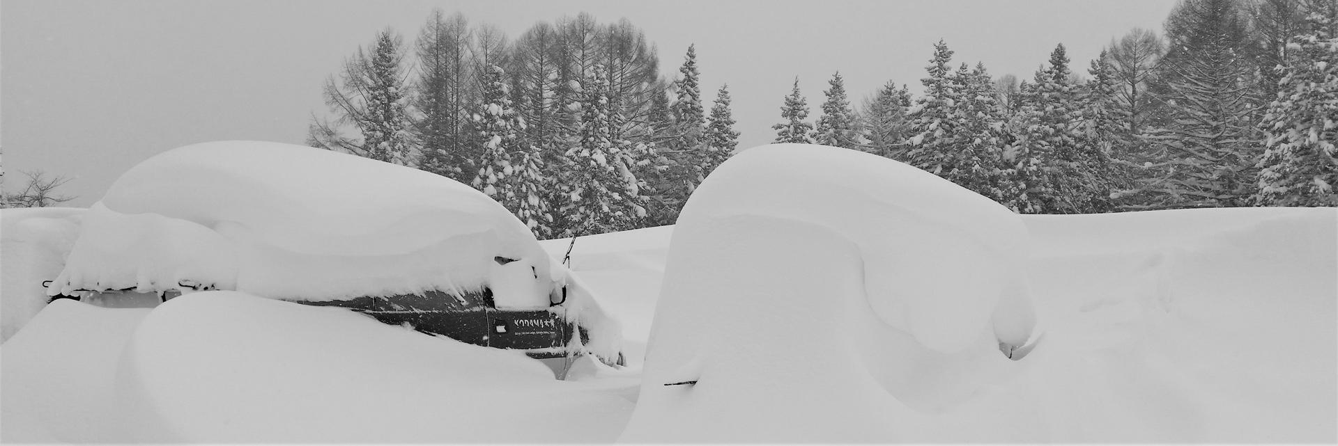 Contact - Kodama Lodge - Japan - Ski & Snowboard