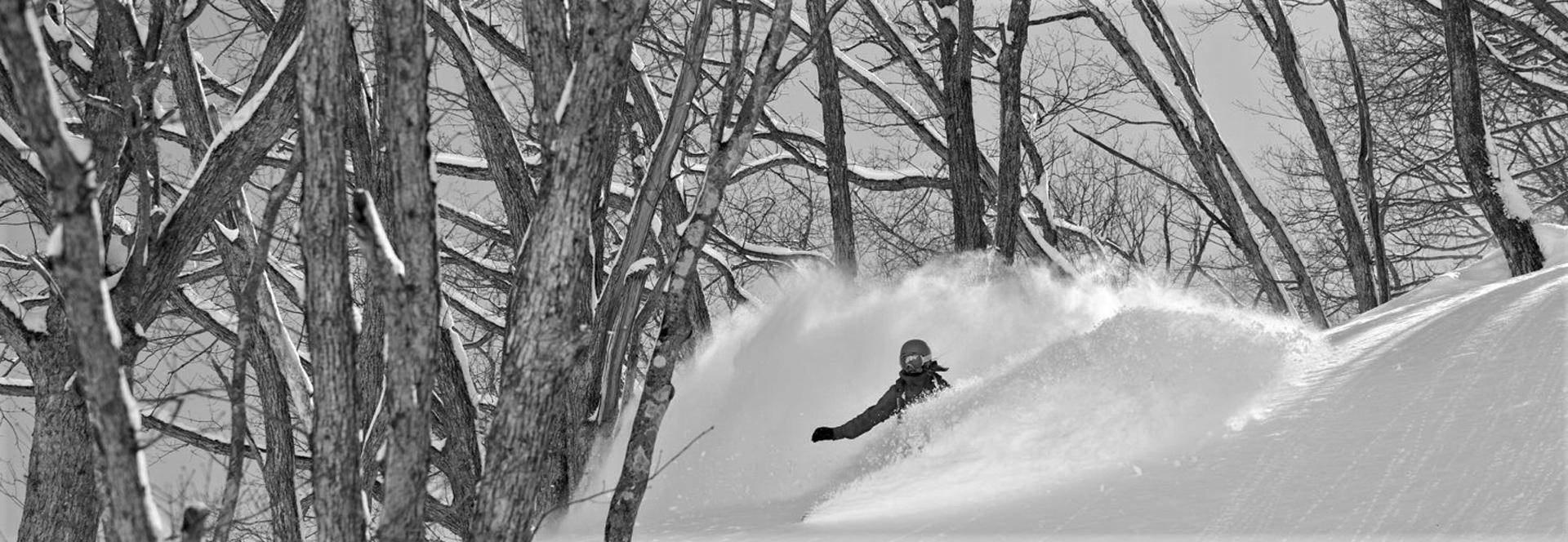 Ski & Snowboard dans la neige poudreuse - Kodama Lodge - Japon