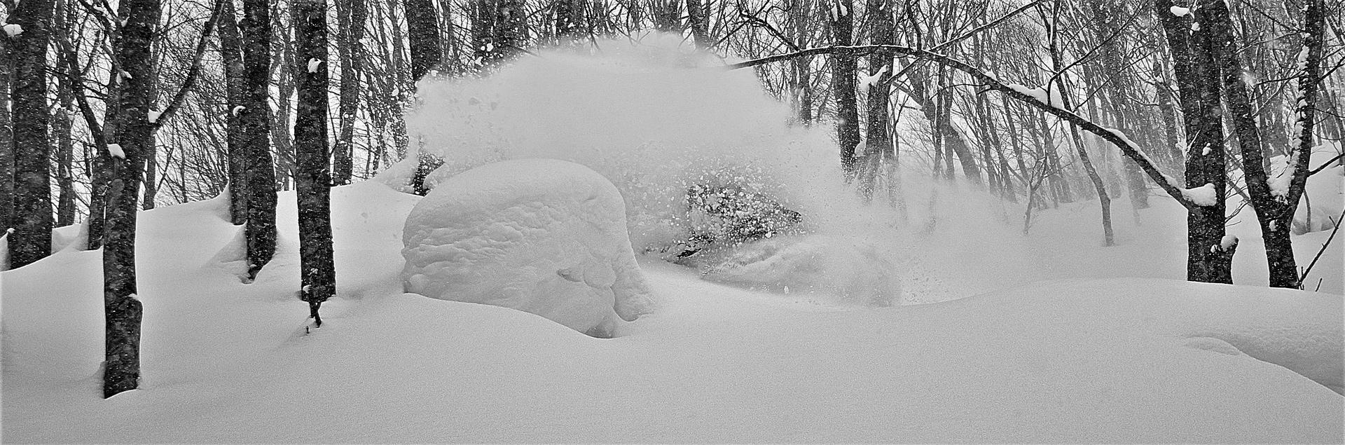Skier dans la poudreuse au Japon